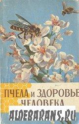 Пчела и самочувствие человека