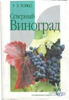 Северный виноград | Лойко Р.Э.